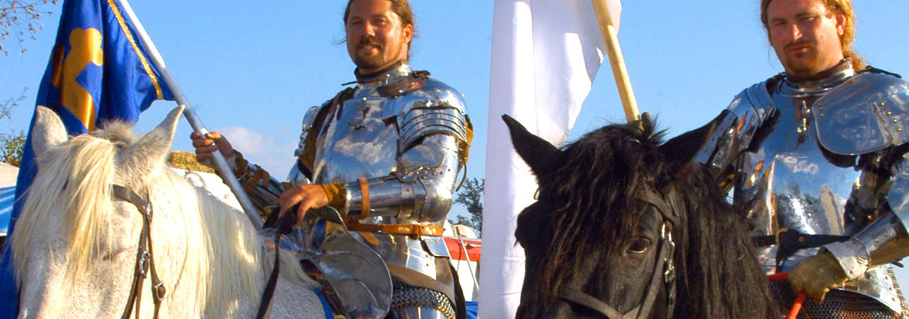 jousting Knights image